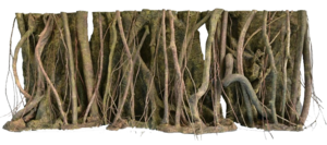 RockZolid - Tropical Forest Roots 198x58cm