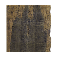 Arstone - Slimline Amazon 50A