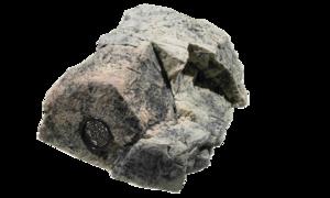 Back to Nature - Modul T Basalt/gnejs