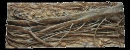 RockZolid - Tropica Forest Tree 198x78cm