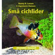 B.Larsen - Små Cichlider