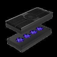 D-D - Hydra 52 HD