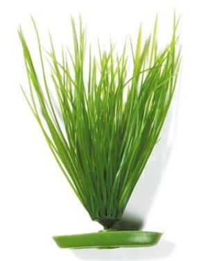 Marina - Nålgräs 20cm